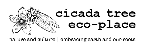 Cicada Tree Eco-Place